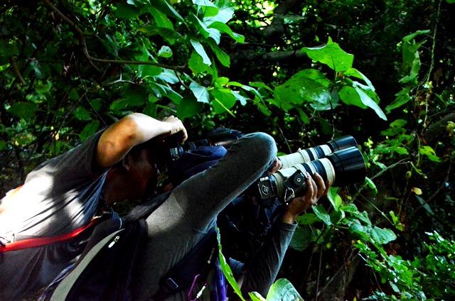 hunting foto