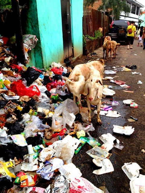 Sampah berserakan dimana-mana