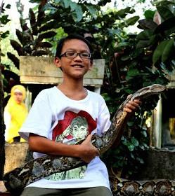 tahun 2013 lilo dan ular